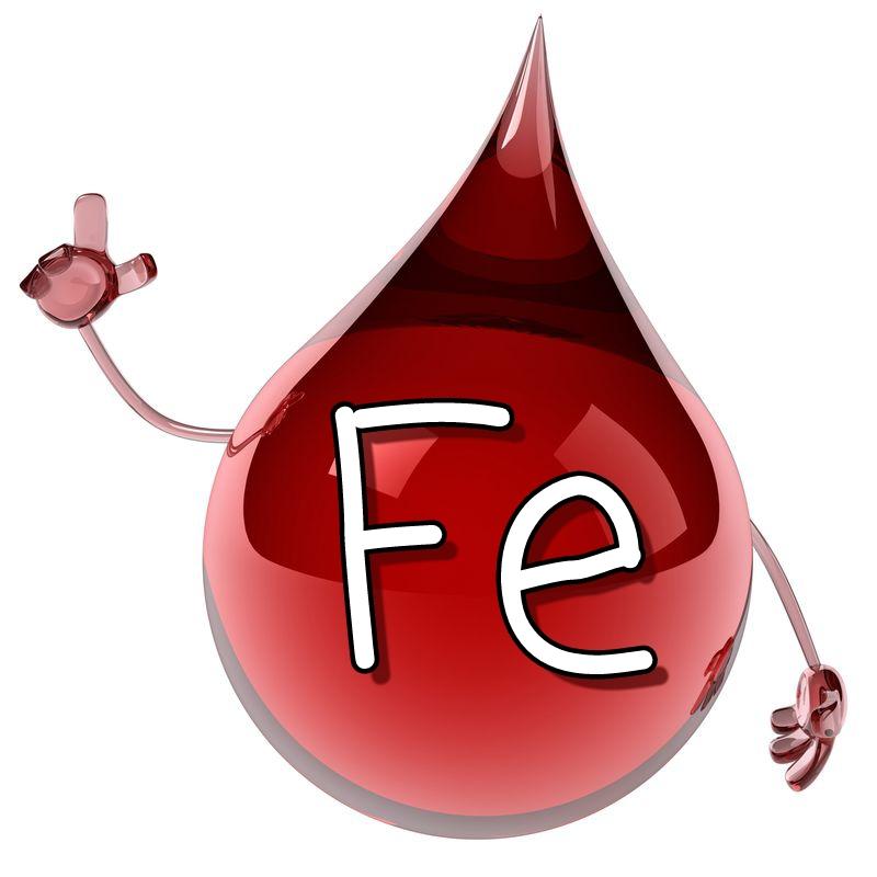 Il ruolo del ferro nel corpo | Parafarmacia Tranchina - Ecommerce Farmacia