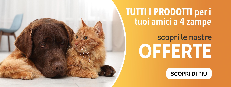 veterinari-pet-cani-gatti-