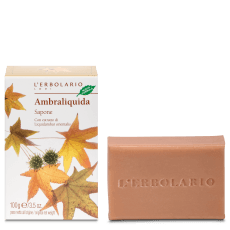AMBRALIQUIDA SAPONE 100 G - Farmaconvenienza.it