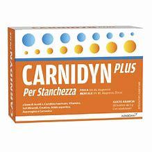 CARNIDYN PLUS 20 BUSTINE DA 5 G GUSTO ARANCIA - Farmaunclick.it