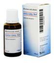HEEL ARNICA COMPOSTO GOCCE 30 ML - Farmacia33
