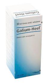 HEEL GALIUM GOCCE 30 ML - Farmacia 33
