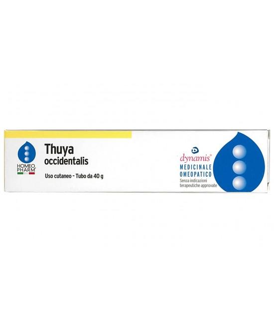 Homeopharm Thuya Occidentalis Unguento 40 g - Farmalilla