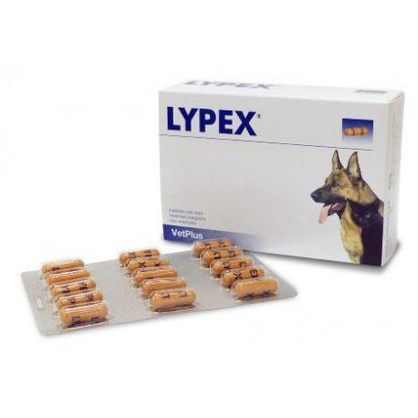 LYPEX 60 CAPSULE - Parafarmacia la Fattoria della Salute S.n.c. di Delfini Dott.ssa Giulia e Marra Dott.ssa Michela