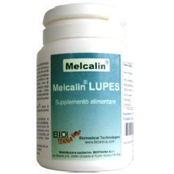 Melcalin lupes 56 cps - Zfarmacia