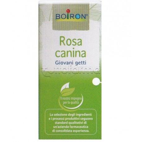 ROSA CANINA MACERATO GLICERICO 60 ML INT - Farmalilla