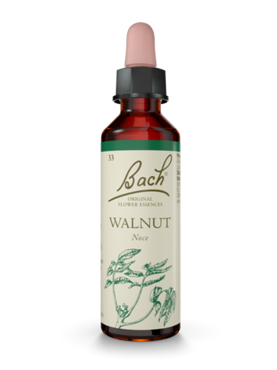 WALNUT BACH ORIG 20 ML - DrStebe