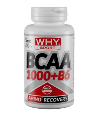 WHY SPORT BCAA 1000+B6 100cpr - Farmalke.it