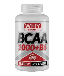WHYSPORT BCAA 300 LIMITED EDITION COMPRESSE - Farmastop