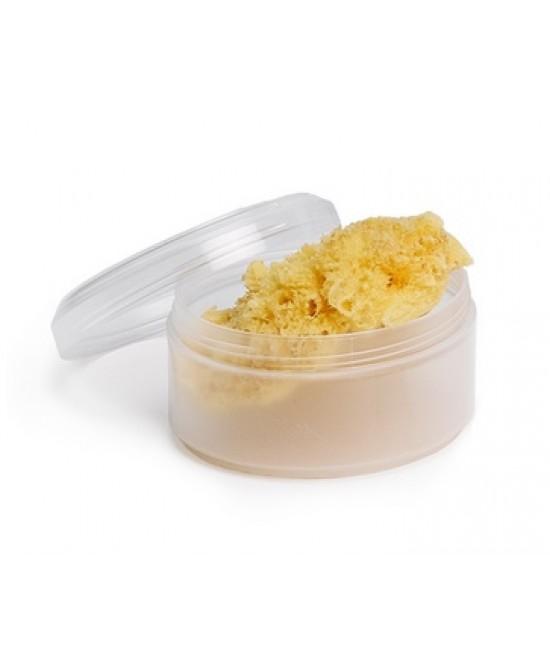 Suavinex Spugna Naturale Piccola + Box - La farmacia digitale