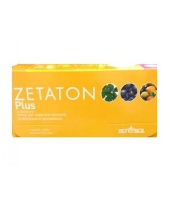 Zetaton Plus 12fl 10ml - Spacefarma.it