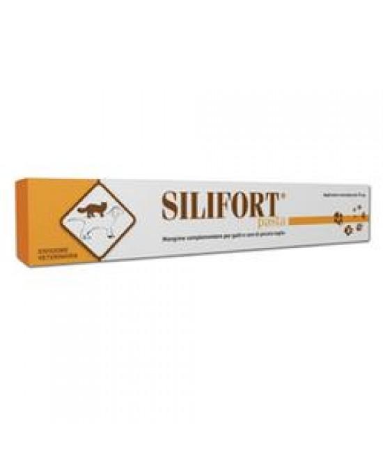 Ddf Silifort Pasta Disintossicante Cani e Gatti Siringa da 30 g