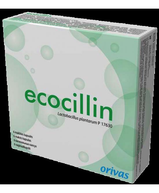 ECOCILLIN*6CPS VAGINALI MOLLI - Farmagolden.it