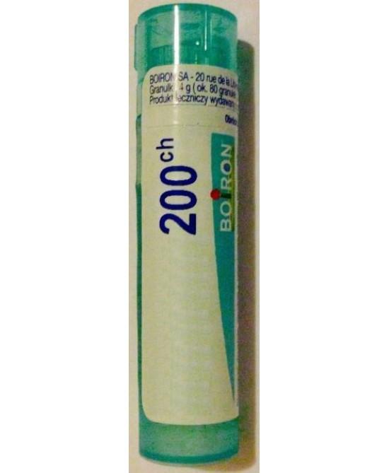Laboratoires Boiron Dulcamara 200ch Globuli