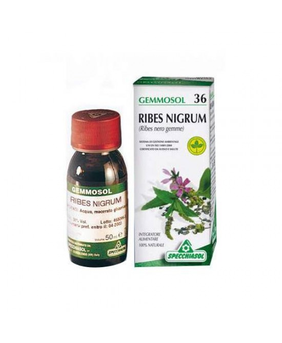 GEMMOSOL 36 RIBES NERO MACERATO GLICERICO 100 ML - FARMAPRIME