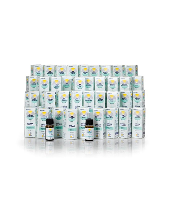 Named Nomabit White Chestnut Formulazioni Fitoterapiche Pronte Globuli 6g - Farmacistaclick