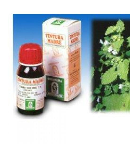 Specchiasol Melissa 17 Soluzione Idroalcolica 50 ml