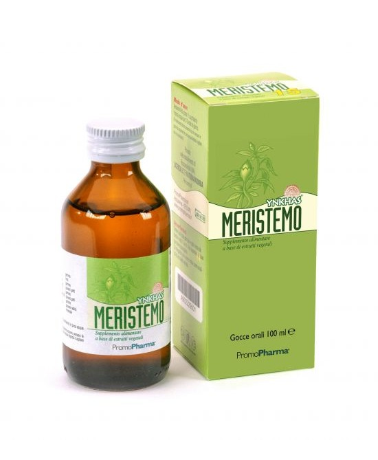 MERISTEMO YNKHAS 10 100ML-902229451