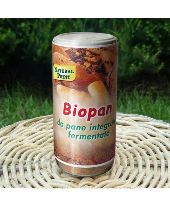 Natural Point Biopan Cereali Fermentati Bio 250g