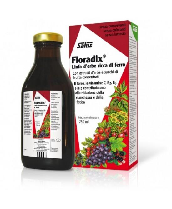 Salus Floradix Linfa D'Erbe Ricca Di Ferro Integratore Alimentare 250ml - Farmacia Giotti