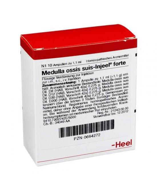 Guna Medulla ossis suis-injeel 10 Fiale da 1,1 ml