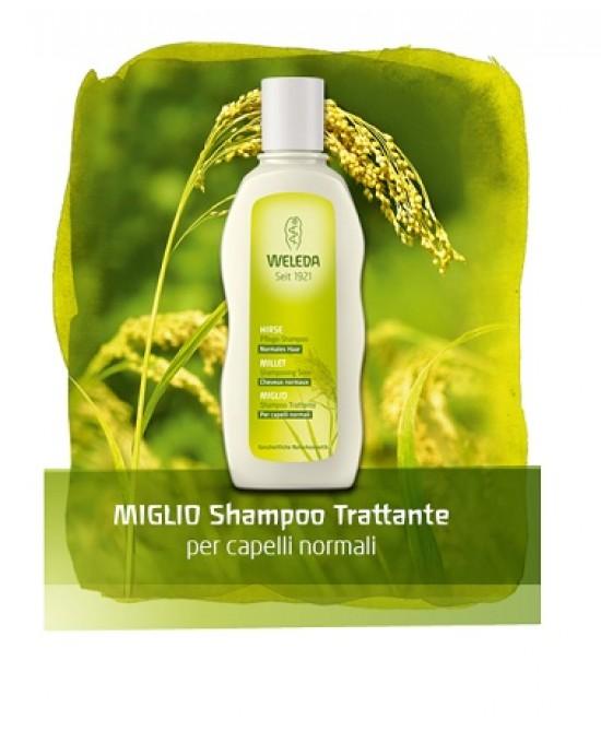 Miglio Shampoo Trattante 190ml