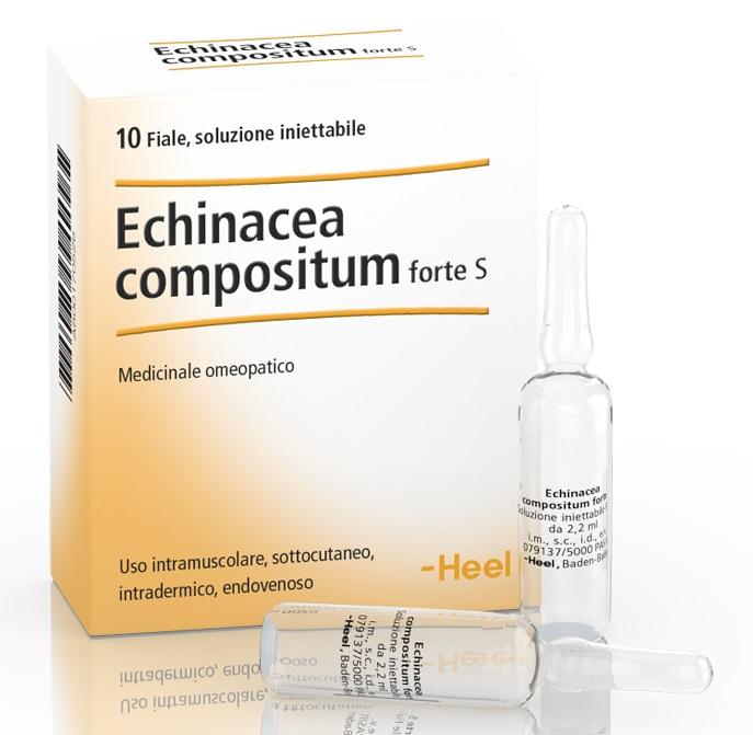 HEEL ECHINACEA COMPOSTA S FORTE 10 FIALE - Farmaci.me