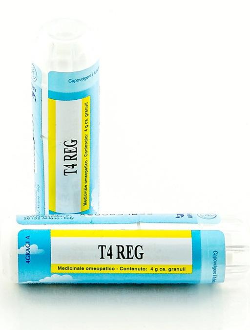Guna T4 Reg Granuli 4 g offerta