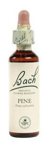 PINE BACH ORIGINAL 10 ML