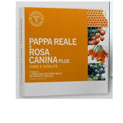 PAPPA REALE ROSA CANINA 10 FLACONCINI 10 ML - Farmaciaempatica.it