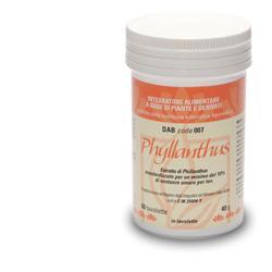 DAB 007 PHYLLANTHUS 60 TAVOLETTE - Farmacia 33