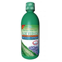 ALOE VERA SUCCO MIRTILLO 500 ML - Farmacia 33