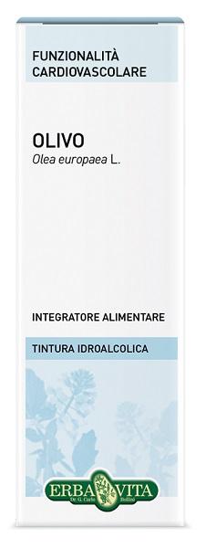 OLIVO SOLUZIONE IDROALCOLICA 50 ML EBV - DrStebe