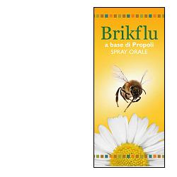 BRIKFLU SPRAY OROSOLUBILE 30 ML - Farmaseller