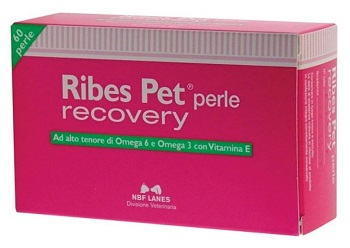 RIBES PET RECOVERY BLISTER 60 PERLE - Farmaci.me