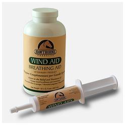 WIND AID SCIROPPO 947ML - SUBITOINFARMA
