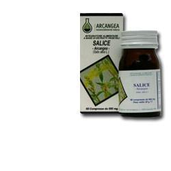 SALICE 60 CAPSULE 500 MG - Farmacia33