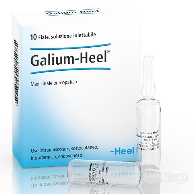 HEEL GALIUM 10 FIALE DA 1,1 ML L'UNA - Farmajoy