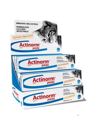 ACTINORM PASTA GATTI 65G - Farmabellezza.it