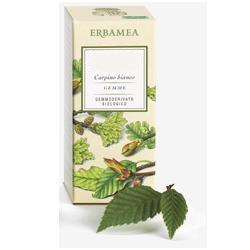 FICUS CARICA GEMME GEMMODERIVATO - Farmaciasvoshop.it