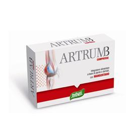 ARTRUM B CON MANGOSTANO 48 COMPRESSE 31 G - Farmaseller