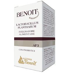 BENOIT LACTOBACILLUS PLANTHARUM 30 CAPSULE