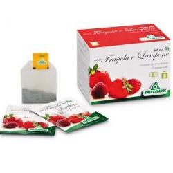 INFUSO FRAGOLA/LAMPONE 20 FILTRI - Farmaconvenienza.it