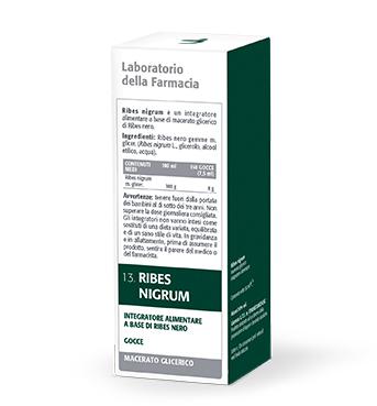 RIBES NIGRUM MACERATO GLICERICO 100 ML LDF