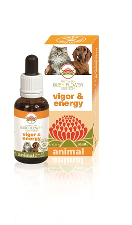 VIGOR & ENERGY 30 ML - Farmacento
