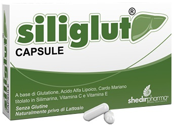 SILIGLUT 20 CAPSULE - Farmafamily.it