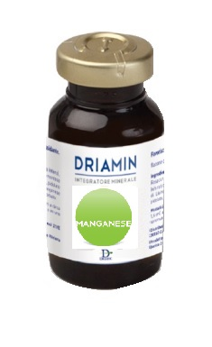 DRIAMIN MANGANESE 15 ML - DrStebe