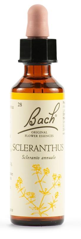 SCLERANTUS BACH ORIG 20 ML - Farmastar.it