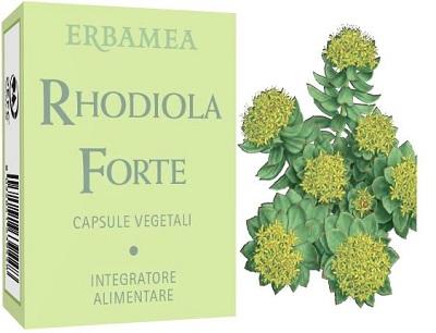 RHODIOLA FORTE 24 CAPSULE - Farmaseller