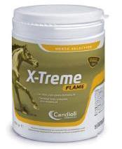 X-TREME FLAME POLVERE BARATTOLO 450 G - Zfarmacia